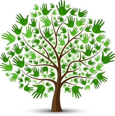 Vitae membership tree