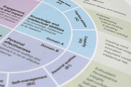 Vitae Researcher Development Framework (RDF)
